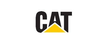 Cat@2x